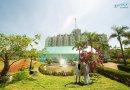 Bảng giá phòng của Eureka Linh Trường Resort năm 2019